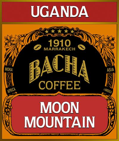 Moon Mountain Coffee